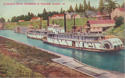 Sternwheelers wait to go through the Cascade Locks in the very early 1900s, shown in a hand-tinted picture postcard. These sternwheelers were built several decades too late to have been the one that rescued Nancy Boggs and her girls.